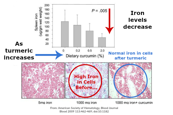 Turmeric Effect on Iron Absorption